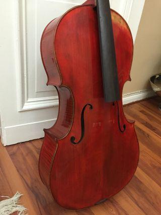 Handmade 4/4 Cello French Red Europäisches Violoncello Handgefertigt Bild