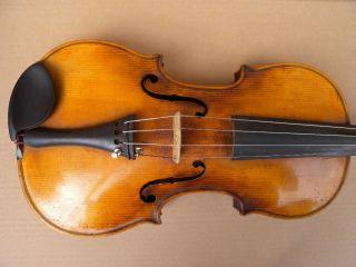 Sehr Alte Geige Violine Zettel Und Brandstempel Stainer Spielbar Bild