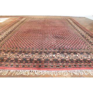 Schöner Handgeknüpfter Orient Palast Teppich Blumen Mir Carpet Old Rug 350x250cm Bild