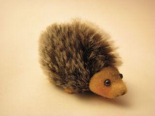 Schuco Igel / Hedgehog,  Arche Noah,  Miniatur 3,  5cm Hoch,  Selten Bild