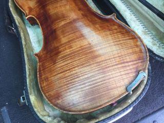 Alte Geige Old Violin Nicolatis Simoutre Lupot Nicolai Discipulus Divoduri 1835 Bild