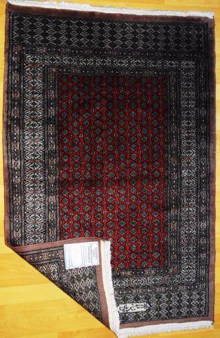 Echte Handgeküpfte - Buchara Teppich Top / Ware - Tappeto - Tapis,  Rug,  1 Million Bild