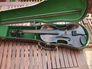 Schöne Alte Löwenkopf Geige Im Koffer Löwenkopfgeige Streichinstrument (violine) Bild