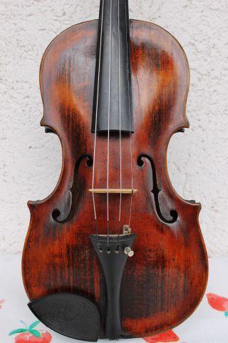 Feine Ur - Alte Meister - Violine Nur 5 Tage Old Violin Violon,  Violino Bild