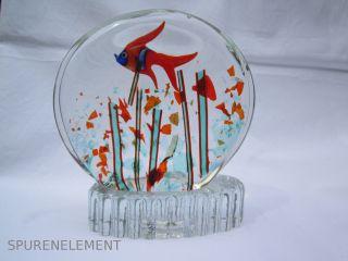 Murano Glas Aquarium 16cm / 1,  9 Kg Bild