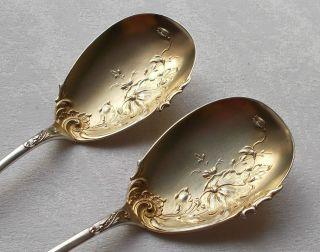 Rar Prächtiges Paar Vorlegelöffel In Rokoko Aus 800er Silber Originalschachtel Bild