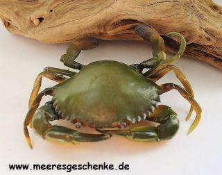 Deko - Krebs Als Strandkrabbe Ca.  13 X 10 X3 Cm Aus Weichem Kunststoff Bild