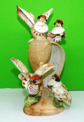 Alte Muschel Figur Vögel Bild
