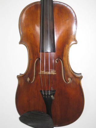 David Hopf Old Violine (geige) Sehr Alt 1782 Brandmarke Zettel Bild