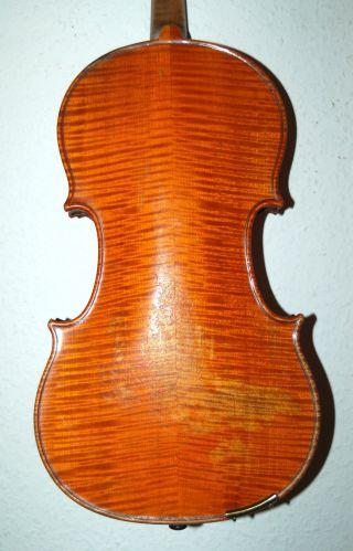 Wunderschön Geflammte Sehr Alte 4/4 Geige - Violine - Um 1850 - 4 Eckklötzchen Bild