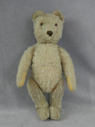 Alter Steiff BÄr - Steiff Teddy Bild
