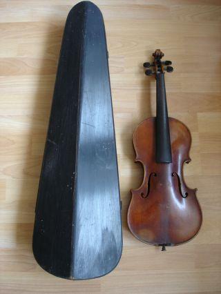 Alte 4/4 Geige Andreas Amati Cremone Anno 1634 Als Restaurations - /bastlerobjekt Bild