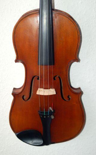 Wunderschöne Alte Deutsche 4/4 Geige - Violine - Um 1900 Bild