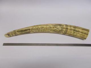 Walrosszahn Stoßzahn Historische Abbildungen Walfänger,  Nachbildung (w22b) Bild