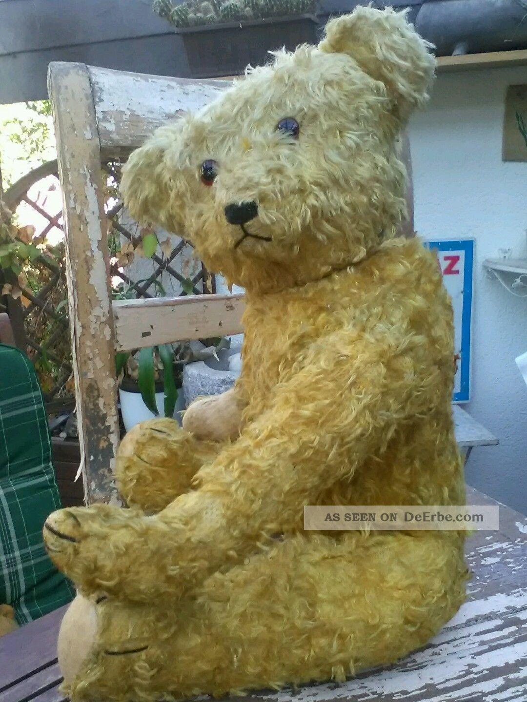 Alter Teddy Sucht Anschluss. Stofftiere & Teddybären Bild