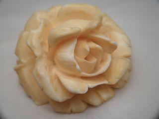Jugendstil Anhänger Große Massive Rose Handgeschnitzt Zahn Horn ⌀ 44 Mm / 22 Gr Bild