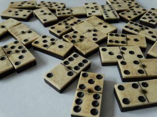 Antikes Dominospiel 28 Spielsteine Bein/ebenholz Vollständig Mit Holzschatulle Bild
