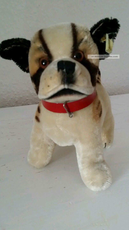 Steiff Hund Bully,  17 Cm,  Mit Altem Knopf Und Restfahne Steiff Bild