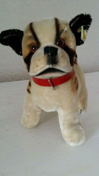 Steiff Hund Bully,  17 Cm,  Mit Altem Knopf Und Restfahne Bild
