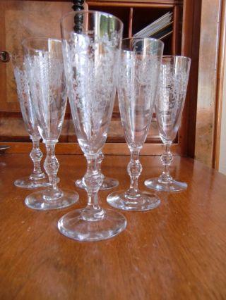 6 Sektgläser,  Champagnerflöten Um 1900 Geätzt/pantographiert,  Stiel Beschliffen Bild
