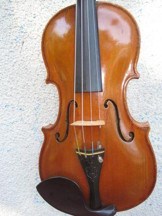 Antike Wunderschön Gearbeitete Violine Geige Thomas Zach 1869 Bild