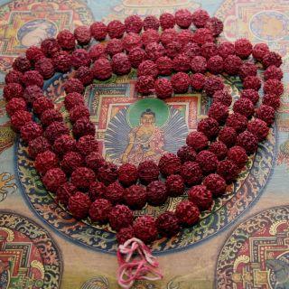 Xl - Mala - Rudraksha - Shiva - Gebetskette Om 180 Cm/ 14 Mm Indien Goa Hippie Bild
