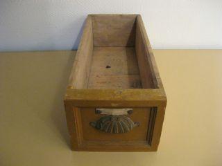 Alte Holzschublade Schublade Holz Tante Emma Laden Apotheke Historismus Ca.  1900 Bild