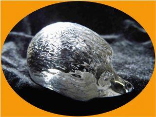 Kleiner Süßer Igel Bleikristall Glas Figur Klar Top Bild