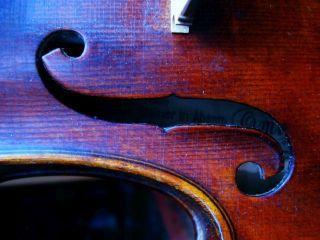 Schöne Alte 4/4 Geige Mit Zettel