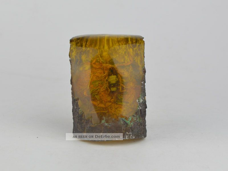 Old Exquisite Amber Contain Scorpion Statue China Antike Bild