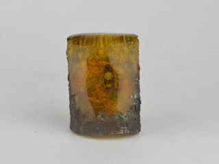 Old Exquisite Amber Contain Scorpion Statue China Bild