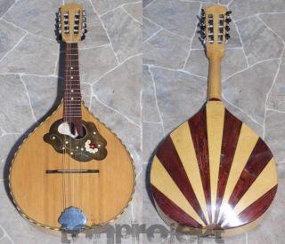 Schöne Alte Mandoline Vintage 8string Mandolin Mandolino Dreima Markneukirchen Bild