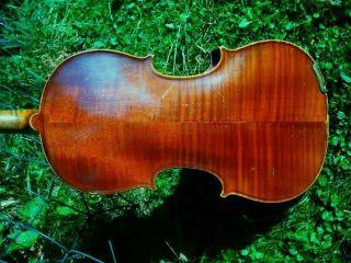 Alte 4/4 Violine Mit Zettel