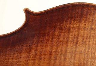 Sehr Alte 4/4 Geige Mit Zettel Pressenda 1847 Violine Violon Violin Viola Viool Bild