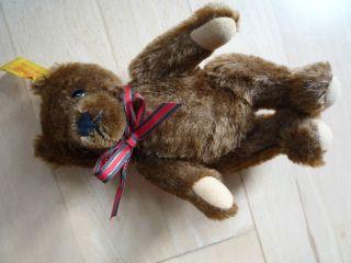 Steiff Teddy 17 Cm - No.  0206/18 Ca.  1990 - 95 Für Sammler ? Bild