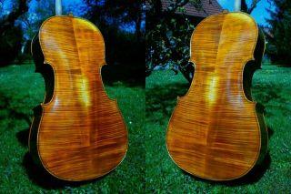 Schönes 4/4 Cello N.