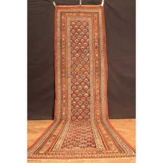 Antik Handgeknüpfter Sammler Teppich Kasak Kazak Shirvan Old Rug Carpet 370x99cm Bild