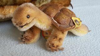 Steiff Mohair Slo Schildkröte,  Turtle 2310,  00 1959 - 67 Bild