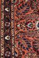 Handgeknüpfter Persischer Teppich - Läufer Ca.  (306x80 Cm) Fachmännisch Gereinigt Teppiche & Flachgewebe Bild 5