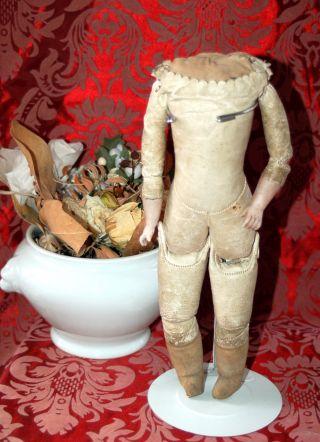 Schöner Kleiner Lederkörper - Lederbalg Körper - Porzellanunterarme - 28cm Antik Bild