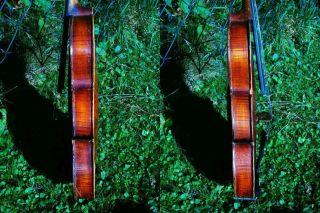 Sehr Schöne 4/4 Geige M.  Zettel