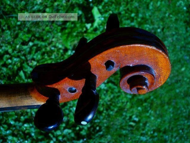 Alte 4/4 Violine M.  Zettel