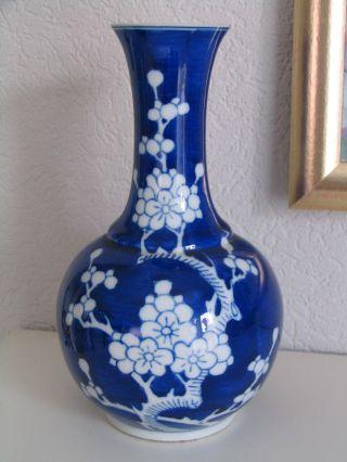 Vase Porzellan Mit Kirschblüte Dekor Blau - Weiß Asiatika China H.  23cm Gemarkt Bild