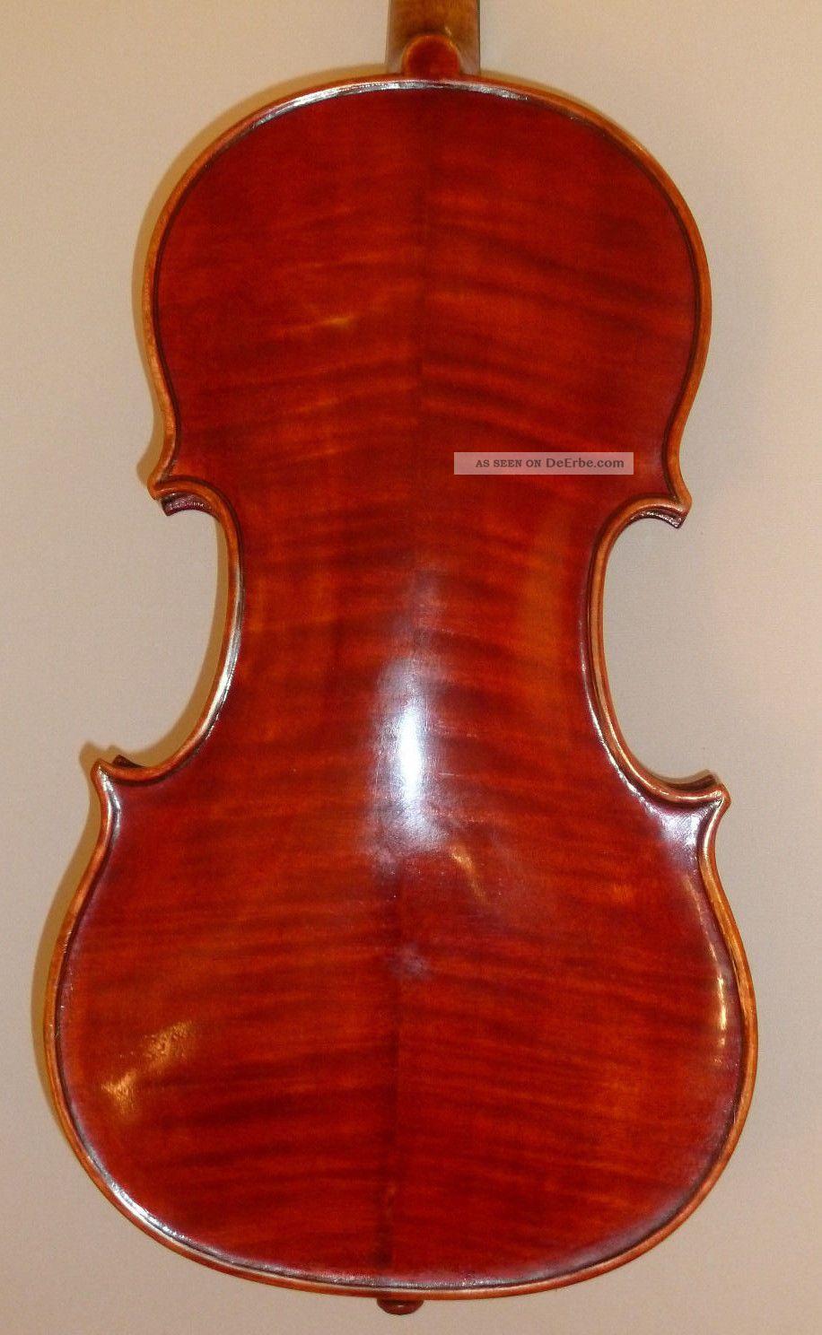 Alte Geige Violine 4/4 Old Violin Italian Labeled Pietro Gallinotti Violino Musikinstrumente Bild