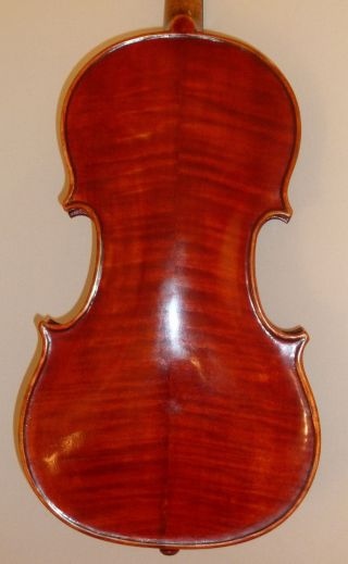 Alte Geige Violine 4/4 Old Violin Italian Labeled Pietro Gallinotti Violino Bild