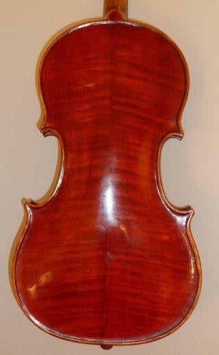 Alte Geige Violine 4/4 Old Violin Italian Labeled Pietro Gallinotti Violino Bild