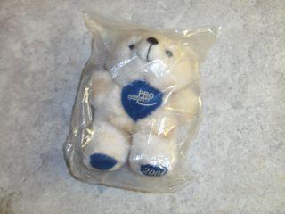 Teddybär Teddy Bär Pro Heidelberg Heidelbär Jahr 2004 Sammler Sammeln Selten Bild