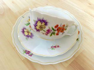 Meissner Porzellan Blumen Dekor Goldrand Kaffeeservice Kaffeetasse Ddr Bild