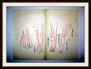 Traditionelle Japan.  Medizin - Handschrift,  Seikotsu - Jutsu,  Handkoloriert,  Um 1700 Bild