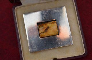 Alte Jugendstil Bernsteinanhänger/brosche Amber Buttscotch Silber 925 1900/1910 Bild